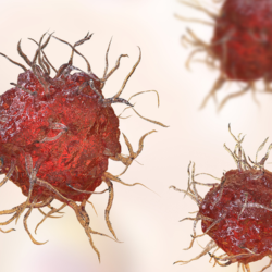 pdcLine-Pharma-dendritic-cell-cancer-vaccine