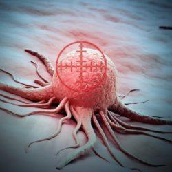 Vesale Bioscience first-round funding
